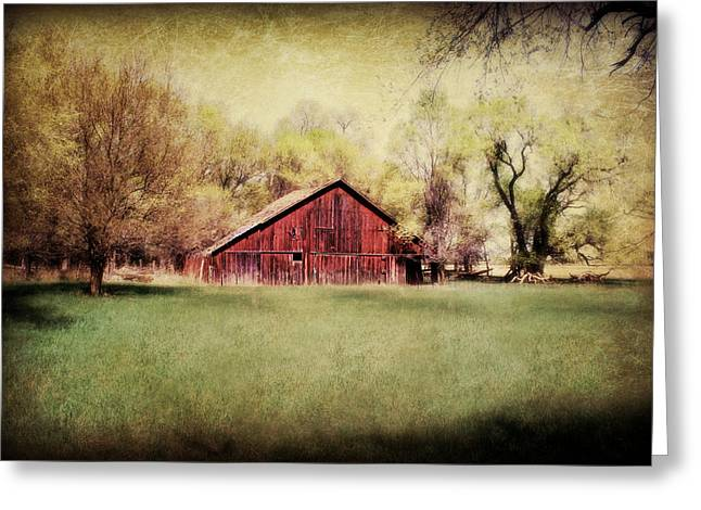 Nebraska Barn Greeting Card by Julie Hamilton