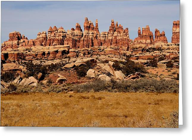 Geology Photographs Greeting Cards - Needles at Canyonlands Greeting Card by Tranquil Light  Photography