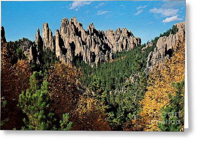 Print Photographs Greeting Cards - Needles Drive in the Black Hills   Greeting Card by Ruth  Housley