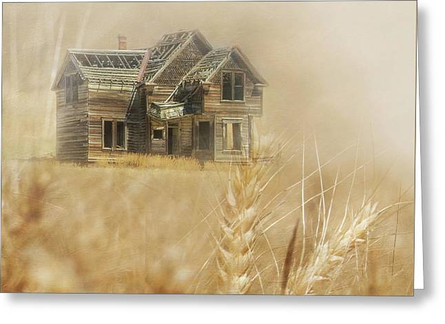 Nelson Homestead 2 Greeting Card by Angie Vogel