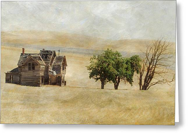 Nelson Homestead Greeting Card by Angie Vogel