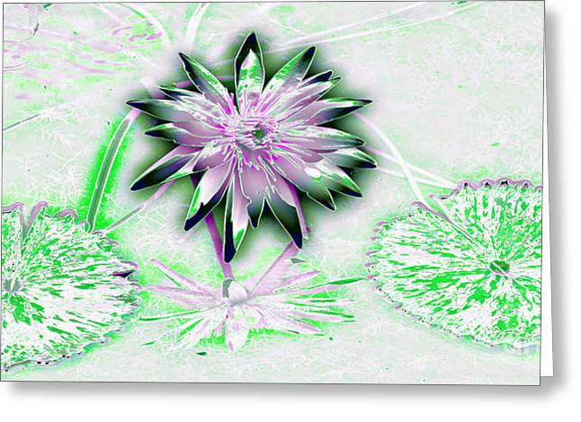 Water Garden Tapestries - Textiles Greeting Cards - Neon Green and Pink Greeting Card by Edna Weber