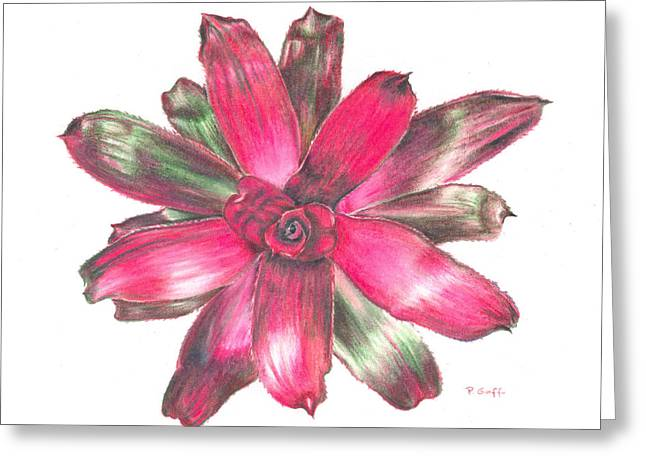 Bromeliad Neoregelia Greeting Cards - Neoregelia Puppy Love Greeting Card by Penrith Goff