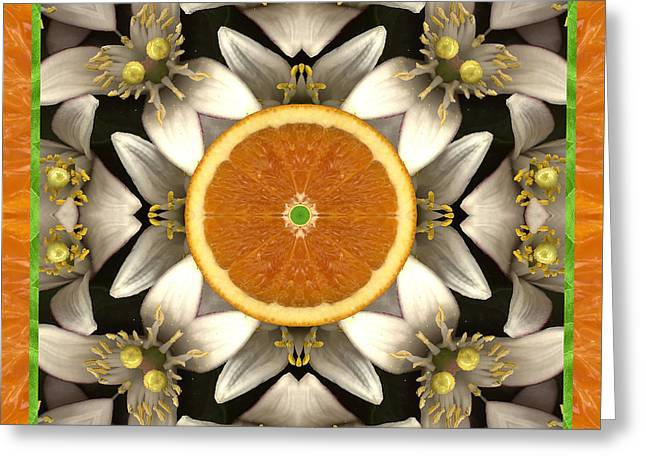 Neroli Greeting Card by Bell And Todd