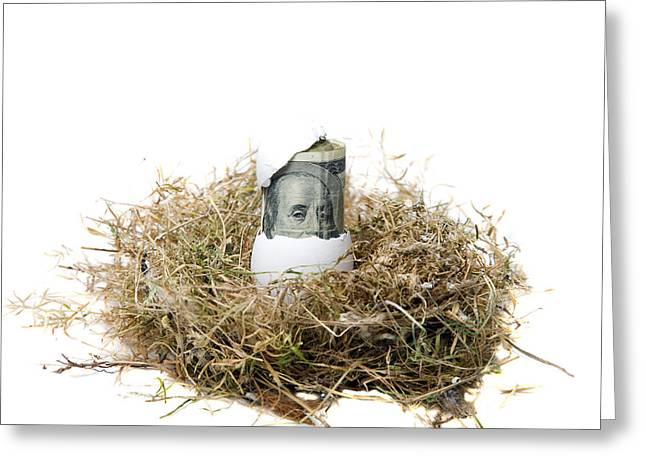 Michael Le Dray Greeting Cards - Nest Egg Greeting Card by Michael Ledray