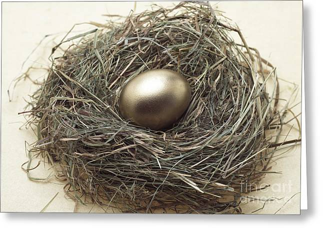 Golden Egg Greeting Cards - Nest With Golden Egg Greeting Card by Gerard Lacz