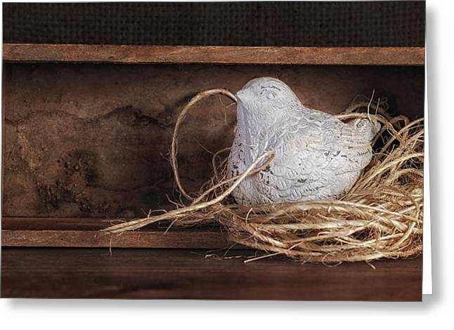 Twine Greeting Cards - Nesting Bird Still Life II Greeting Card by Tom Mc Nemar