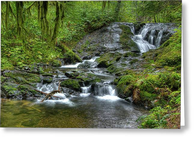 Nestucca River Greeting Card by Jean Noren