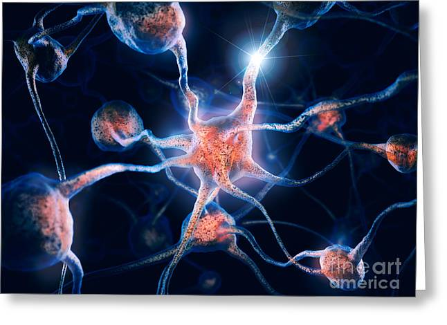 Microbiology Greeting Cards - Neurons and neural connections Brain cells 3D illustration Greeting Card by Oleksiy Maksymenko