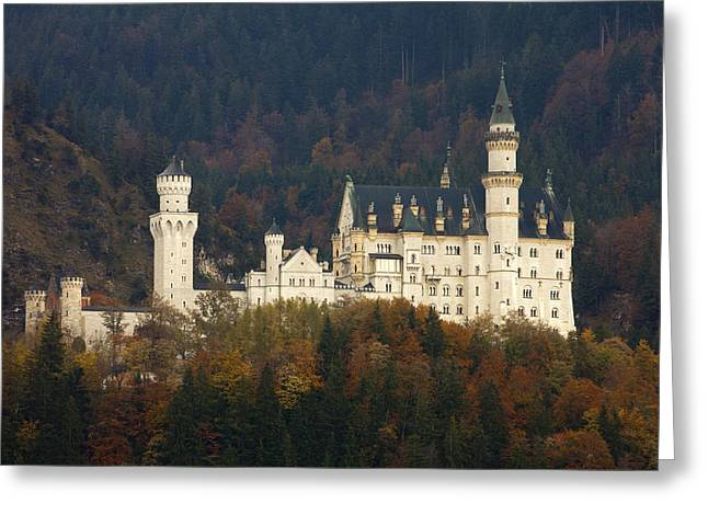 Travel Germany Greeting Cards - Neuschwanstein Castle Greeting Card by Andre Goncalves