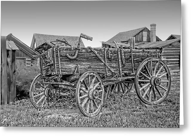 Best Sellers -  - Horse And Cart Greeting Cards - Nevada City Montana Freight Wagon Greeting Card by Daniel Hagerman