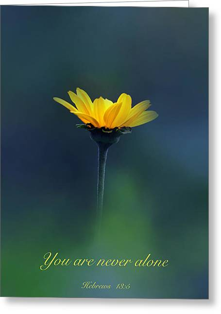 Never Alone Greeting Cards - Never Alone Greeting Card by Debbie Nobile
