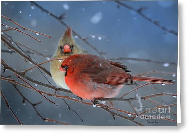 Nature Scene Greeting Cards - Never Alone Greeting Card by Nava  Thompson