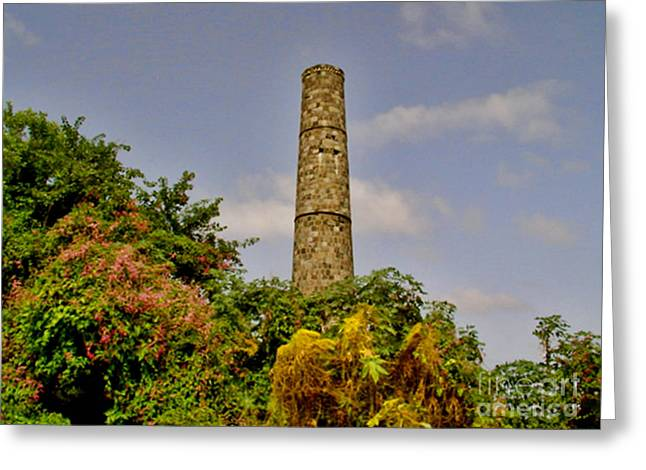 Nevis Sugar Mill II Greeting Card by Louise Fahy