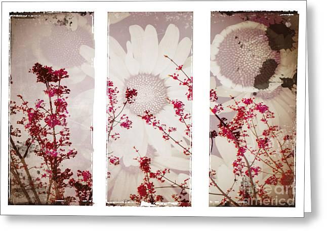 Flower Blossom Greeting Cards - New Beginnings Greeting Card by Tara Turner