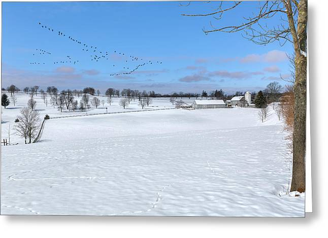 Spring Scenes Greeting Cards - New England Landscape  Greeting Card by Bill Wakeley
