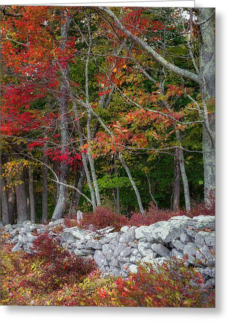 New England Stonewall Greeting Card by Bill Wakeley