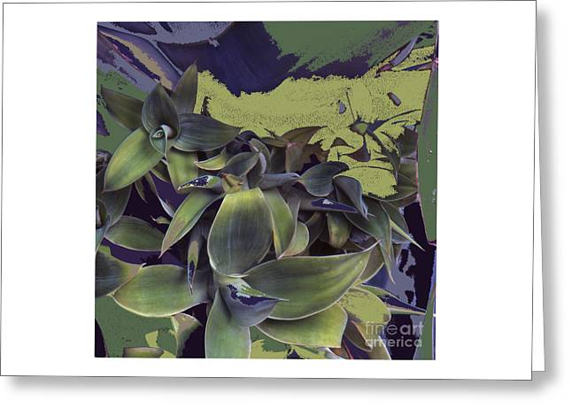 Cellphone Greeting Cards - New Growth Greeting Card by Alan M Thwaites