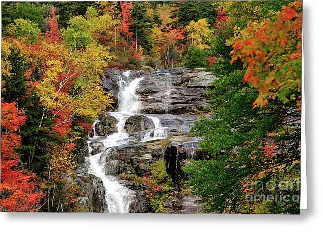 New Hampshire Waterfall Greeting Card by Betty LaRue
