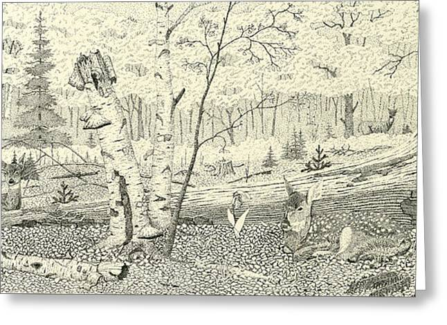 Stippling Paintings Greeting Cards - New Life - Whitetail Fawns Greeting Card by Susan Zabel