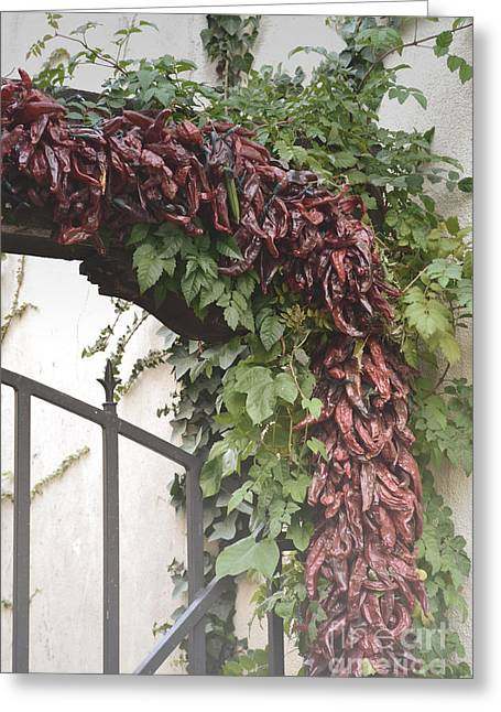 Southwest Gate Print Greeting Cards - New Mexico Red Chili Iron Gate Greeting Card by Andrea Hazel Ihlefeld
