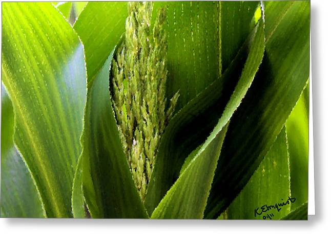 Cornstalks Greeting Cards - New Silk Greeting Card by Kristin Elmquist