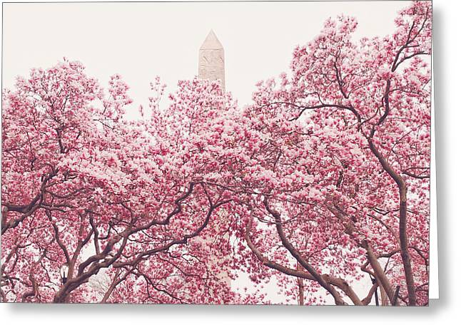 New York Photo Greeting Cards - New York City - Springtime Cherry Blossoms Central Park Greeting Card by Vivienne Gucwa