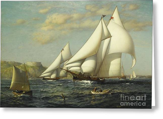 New York Yacht Club Racing Boats In New York Harbor Greeting Card by James Gale Tyler