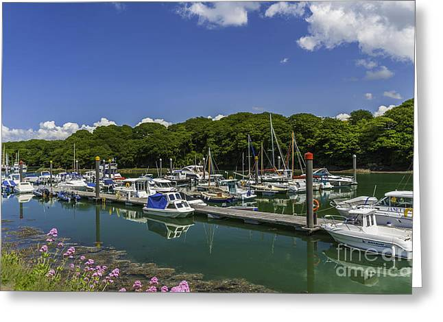 Beach Greeting Cards - Neyland Marina Greeting Card by Steve Purnell
