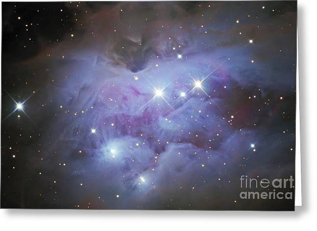 Starforming Greeting Cards - Ngc 1977, An Emission Nebula In Orion Greeting Card by Don Goldman