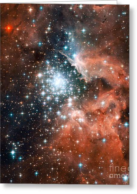 Star Formation Greeting Cards - Ngc 3603, Giant Nebula Greeting Card by Nasa