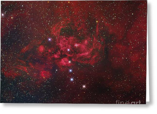 Star Evolution Greeting Cards - Ngc 6357, The Lobster Nebula Greeting Card by Roberto Colombari