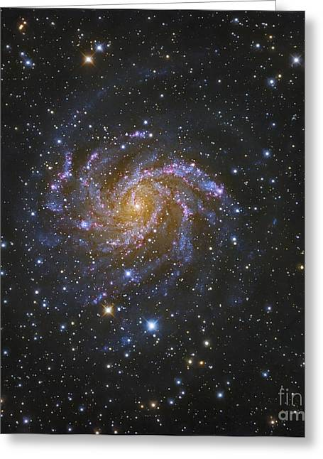 Nuclei Greeting Cards - Ngc 6946, Also Known As The Fireworks Greeting Card by Robert Gendler