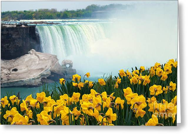 Horseshoe Falls Greeting Cards - Niagara Falls Spring Flowers and Melting Ice Greeting Card by Charline Xia