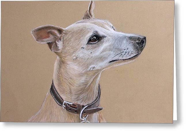 Niamh The Whippet Greeting Card by Mary Mayes