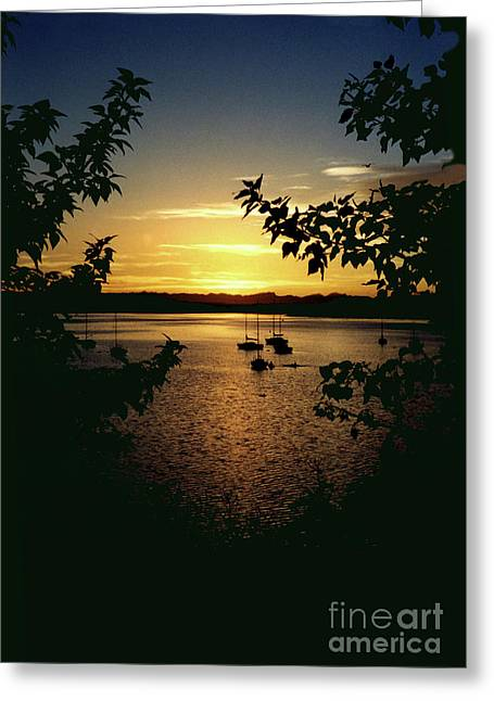 Glenmore Reservoir Greeting Cards - Night Mooring Greeting Card by Al Bourassa