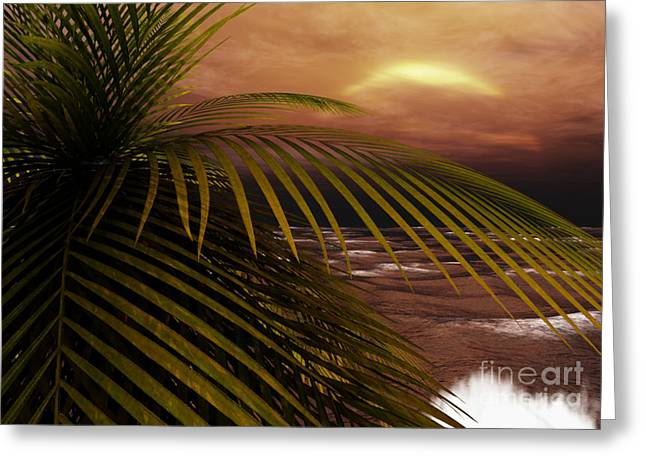 Tropical Oceans Greeting Cards - Night Moves Greeting Card by Richard Rizzo