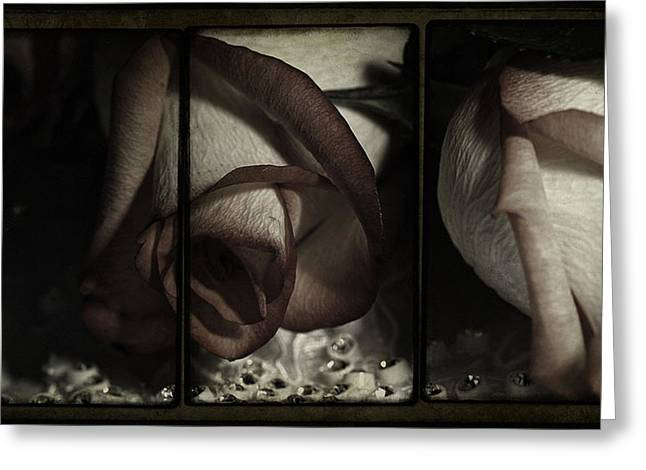 Artistic Photography Greeting Cards - Night Of Love And Roses Greeting Card by Georgiana Romanovna