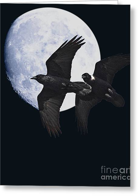 Animals Art Greeting Cards - Night of the Ravens Greeting Card by Animals Art
