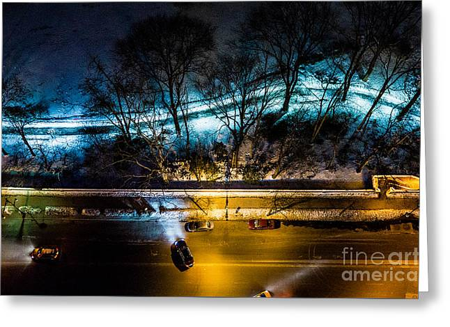 Greeting Card featuring the photograph Central Park by M G Whittingham