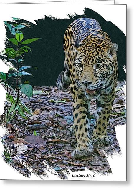 Jaguars Digital Greeting Cards - Night Prowler Greeting Card by Larry Linton