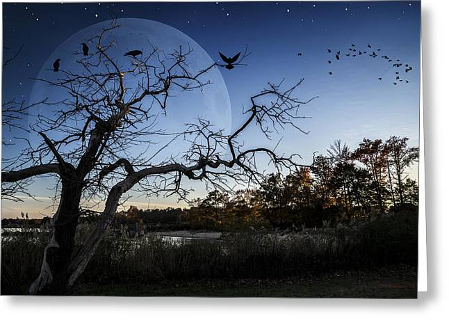 Flying Animal Greeting Cards - Night Shift Greeting Card by Brian Wallace