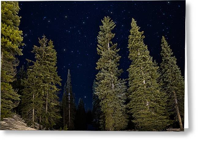 Snowy Night Night Greeting Cards - Night Snowshoeing Greeting Card by James Wheeler