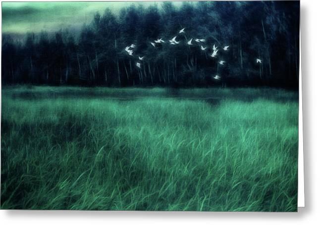Nightbirds Greeting Card by Priska Wettstein
