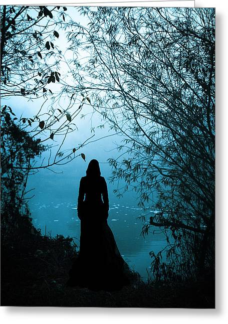 Black Dress Greeting Cards - Nightfall Greeting Card by Wojciech Zwolinski