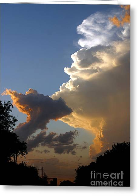 Nightly Storm Greeting Card by Steve Augustin