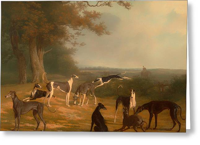 Greyhound Dog Greeting Cards - Nine Greyhounds in a Landscape Greeting Card by Jacque-Laurent Agasse