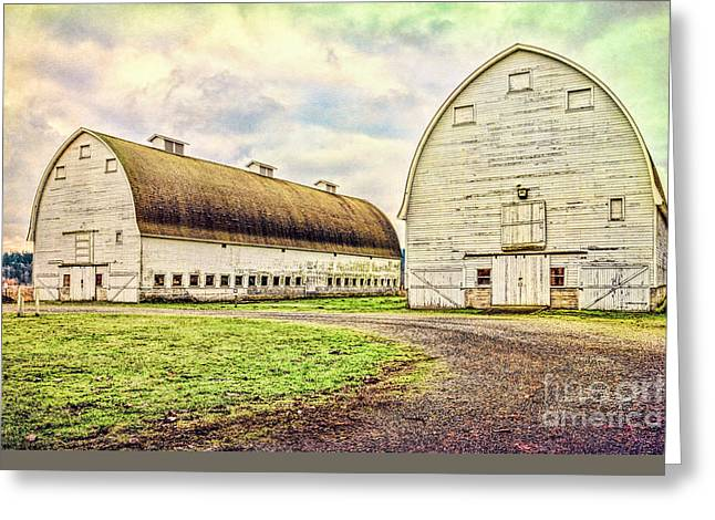 Nisqually Twin Barns Greeting Card by Jean OKeeffe Macro Abundance Art