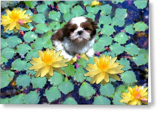 Dogs Digital Greeting Cards - No Accident Greeting Card by Richard Okun