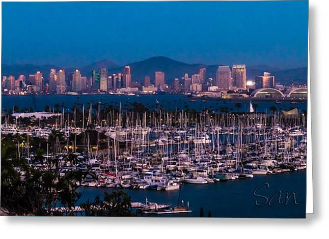 Ocean Panorama Greeting Cards - San Diego Cityscape and Marina Greeting Card by Patti Deters